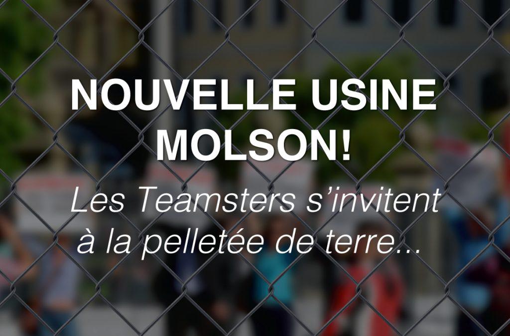 molson1new